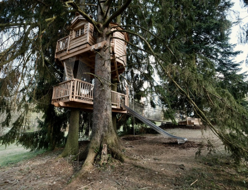 Drei Generationen. Ein Baumhaus.